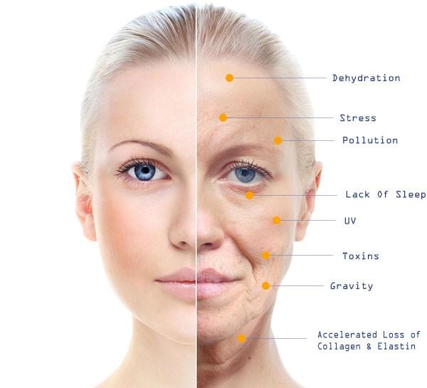 Probiotic Skincare for The Ultra-Sensitive Skin